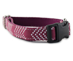 Raspberry Splash Chevron Dog Collar
