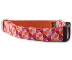 Alyssa in Orange Dog Collar