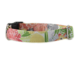 Hazel Dog Collar