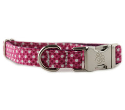 Raspberry Tiny Dot Dog Collar