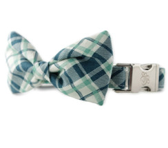 Grasshopper Plaid Bow Tie Dog Collar