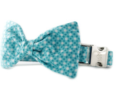 Ocean Tiny Dot Bow Tie Dog Collar