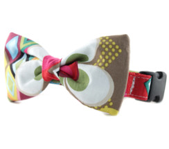 Rainbow Flower Mosaic Bow Tie Dog Collar
