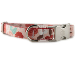 Sweet Rose Dog Collar
