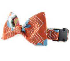 Orange Splash Bow Tie Dog Collar