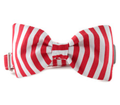Candy Cane Stripe Bow Tie Dog Collar