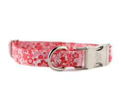 Sadie Dog Collar