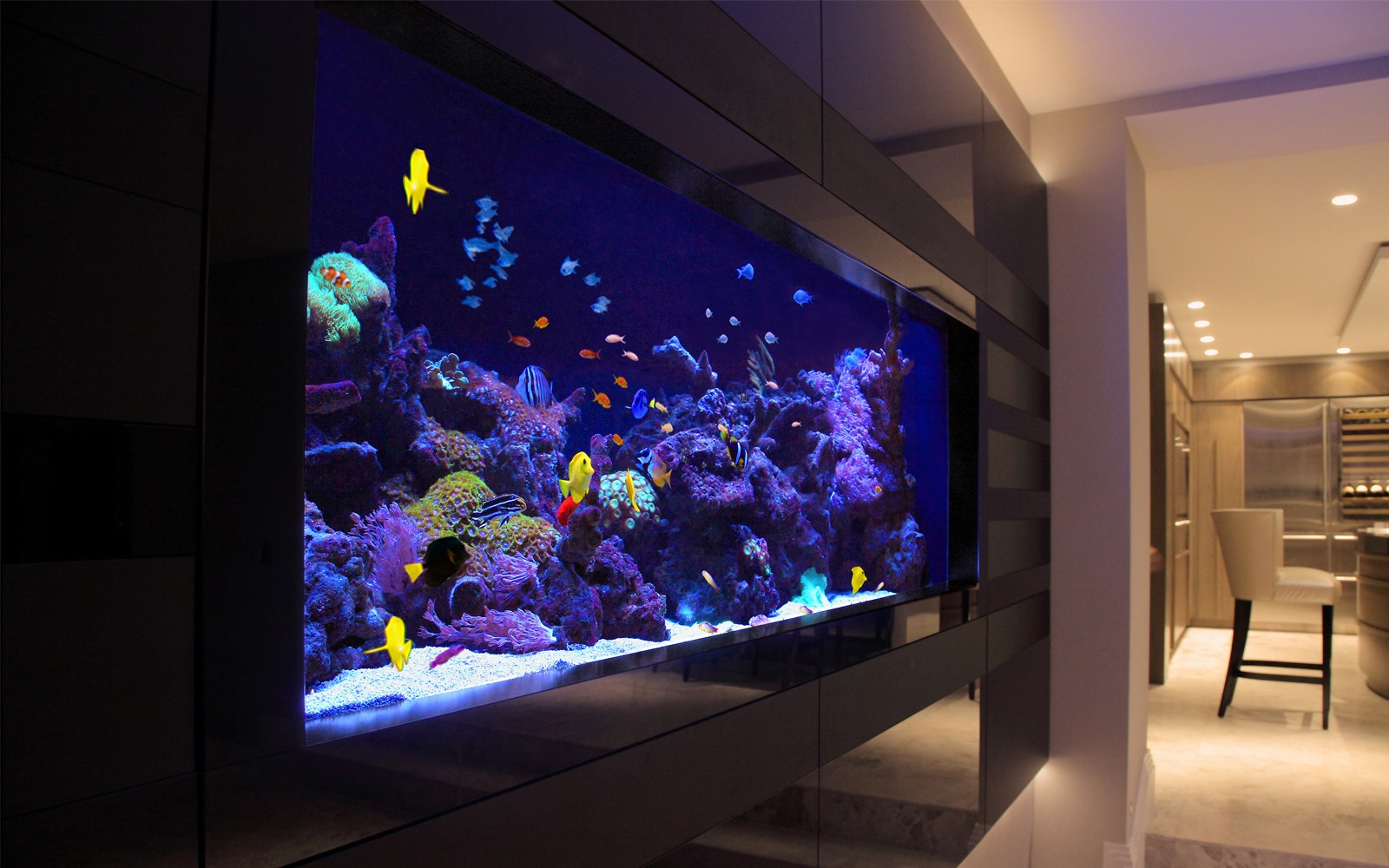 Aquarium supplies australia buy fish tank buy marine fish for Where to buy fish online