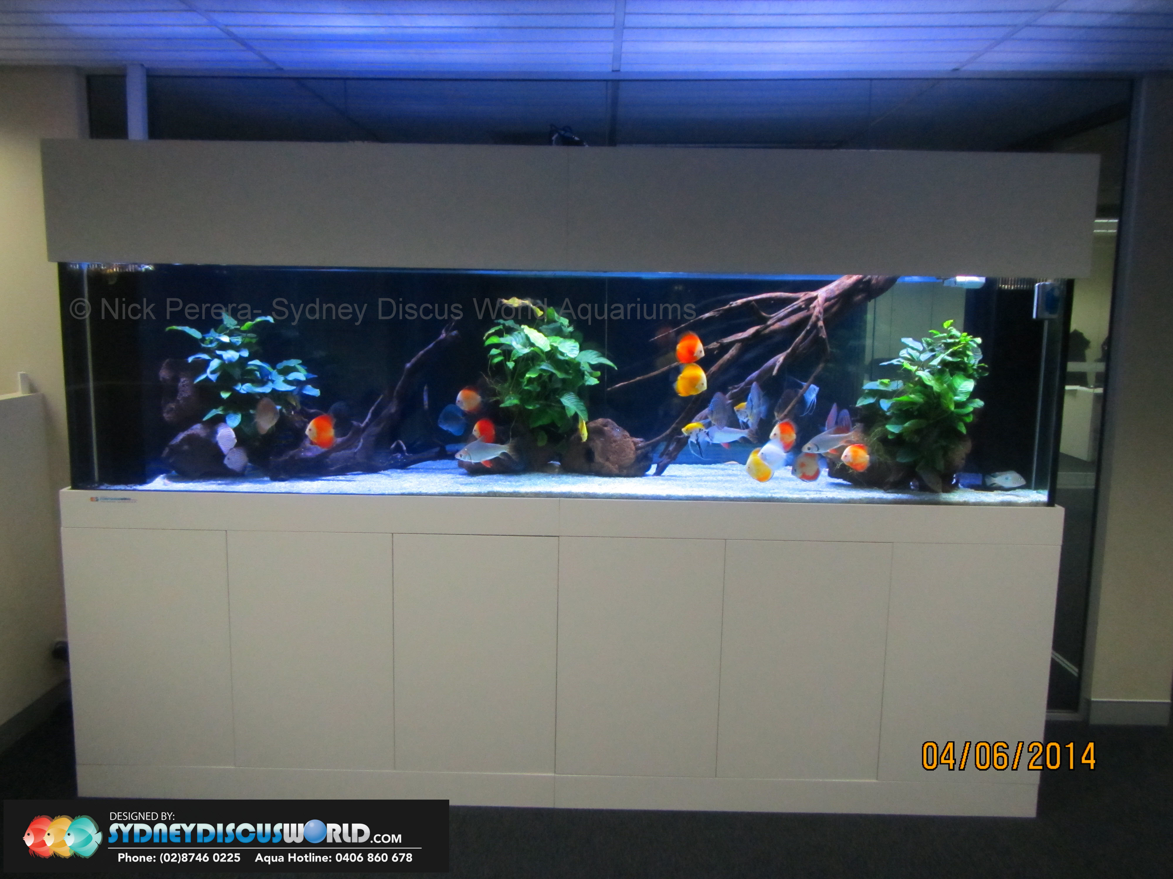 Custom Fish Tanks SydneyCustom Aquariums SydneyCustom Aquarium ...