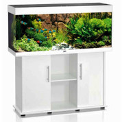 Juwel Rio Aquarium 240W Tank and Stand Package