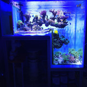 L-shaped/Step Aquariums 1500