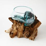 Wood + Glass Terrariums M