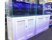 Beach style aquarium and cabinet.