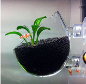 Cool Now - Glass Plant Cup Holder
