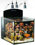 Aqua Medic Blenny Nano Reef 76L
