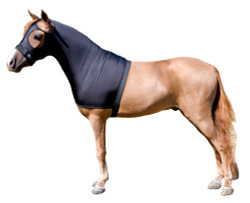 "Mini stretch hoods are designed to aid with grooming a miniature horse by providing a cover that helps to smooth the minis body hair, as well as training the minis mane to lie flat and fall to one side. The hood also is great as a liner under a heavier garment.   ""Seamless Face"" design eliminates any seams below the eyes for maximum safety. Mini Stretch Sleazy Hoods are made from the same solid color choices as full size horse hoods.  Available in five sizes.  Size is determined by girth measurement in inches.     * NOTE: All Miniature Horse products made by Sleazy Sleepwear for Horses, are sewn with the seams on the outside of the garment to help keep a smooth coat."