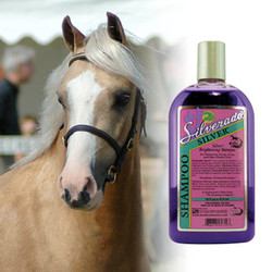 Silverado Silver Shampoo™ - For Whiter than White manes & tails. Palominos, Paints, Grays, and other Fancy Colors will look better than ever.  Silverado Silver Shampoo™ is loaded with optical brighteners that give your horse brighter whites, shiny highlights and silvery, sparkling grays.  Silverado Silver Shampoo™ unique formula works to neutralize yellowing and enhance highlights. Vitamin E and Aloe help to prevent and repair breakage too.  Available: Sizes 16 oz