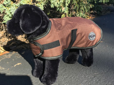 Windhorse Sherpa Lined Dog Coats