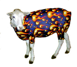 Show off your lamb with fun and functional Lambajams™ from Sleazy Sleepwear for Horses™.  The Lambajam helps to keep the wool clean and tight.  It is made from nylon or polyester Lycra and is available in all of the solids, prints and foils offered by Sleazy Sleepwear for Horses™.  Lambajams™ come in 4 sizes.