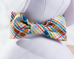 """Multi Plaid Chasin' Tail Bow Tie  Chasin' Tail Doggie Designs are special handmade creations.  Each piece is made by hand, with care, in Boring Oregon.  Chasin' Tail Bow Ties are fun and attractive collar accesories.  These Bow Ties are available in 3 sizes and attached to your Chasin' Tail collar or any other collar with hook and loop attachments.  Bow Ties are made from a washable fabric.  Gently wash and hang to dry.  Chasin' Tail dog collar Bow Tie accessories can be ironed with a cool iron to remove wrinkles if they should appear.  Chasin' Tail Bow Ties come in the following sizes,  SM - measures 4"""" in length  Med - measures 5"""" in length  LG - measures 6"""" in length   Chasin' Tail also offers matching handmade leashes, collars, and other accessories like fun Flowers to dress up any collar.  Look for them to order and complete your pet's special look."""
