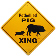 "Potbellied Pig Xing / 12""x12"" / Yellow & Blk"