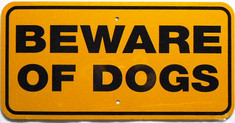 "Beware of Dogs / 6""x12"" / Yellow & Black"