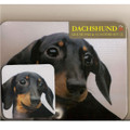 Black/Tan Dachshund Mouse Pad and Coaster Set
