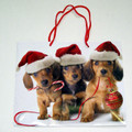 Christmas Gift Bag With Dachshund Puppies