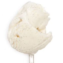 Ndali Estate Vanilla Bean - Jeni's Splendid Ice Creams