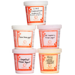 Frozen Yogurts Collection - Jeni's Splendid Ice Creams