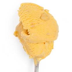 Buttercup Pumpkin with Amaretti Cookies - Jeni's Splendid Ice Creams