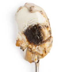Sweet Cream with Molasses & Peanuts - Jeni's Splendid Ice Creams
