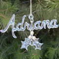 Personalized Hand Blown Glass Christmas Ornament