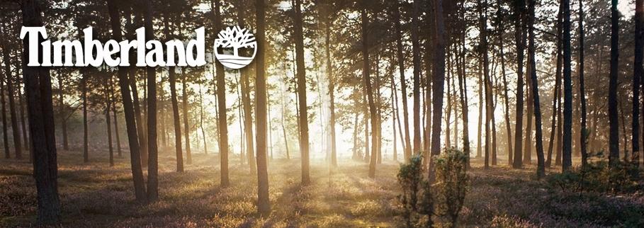 timberland-banner.jpg