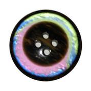 Four Hole Rainbow Button #352