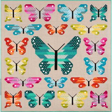 Elizabeth Hartman - Lepidoptera