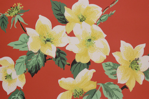 1950s floral wallpaper