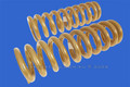 Navara NP300 FRONT Coil Springs - 40mm