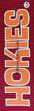 Virginia Tech Ribbon