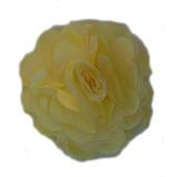 Rosette flowers - Yellow