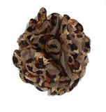 Rosette flowers - Leopard