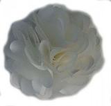 Rosette flowers - Ivory