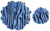 Zebra Gerber Daisy Petals