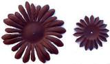 Brown Gerber Daisy Petals