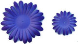 Lavender Gerber Daisy Petals
