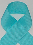 Schiff Aquamarine Grosgrain Ribbon