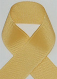 Schiff Lemonade Grosgrain Ribbon