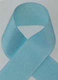 Schiff Light Blue Grosgrain Ribbon