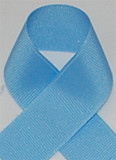 Schiff Blue Grosgrain Ribbon