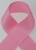 Schiff Pink Grosgrain Ribbon